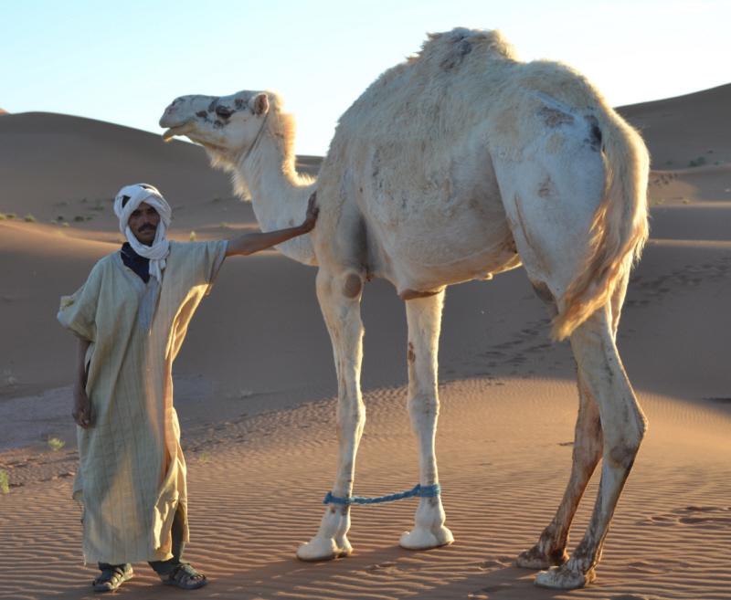 Slow down in der Wüste