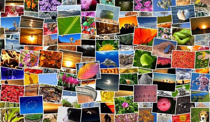 Die perfekte Projektionsfläche für Ihre schönsten Fotos