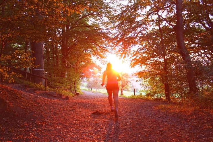 5 Tipps, um im Herbst gesund zu bleiben